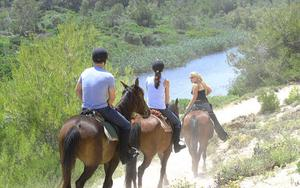 Thumbnail for Horseback Riding Tour in Mallorca