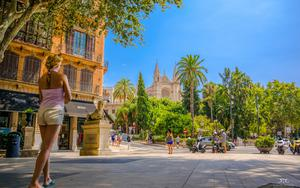 Thumbnail for Explore Exciting Places Near Palma